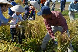 9/27-28 ささかみで実りの秋を迎えました 稲刈りツアー